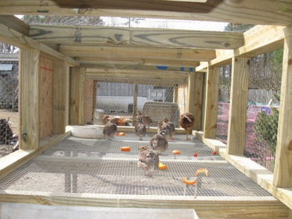 Quail Cage Construction http://solarquailfarm.weebly.com/things-we-build.html